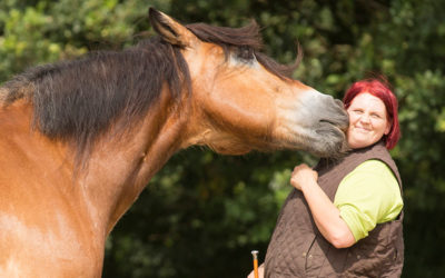The emotion of the horse matters