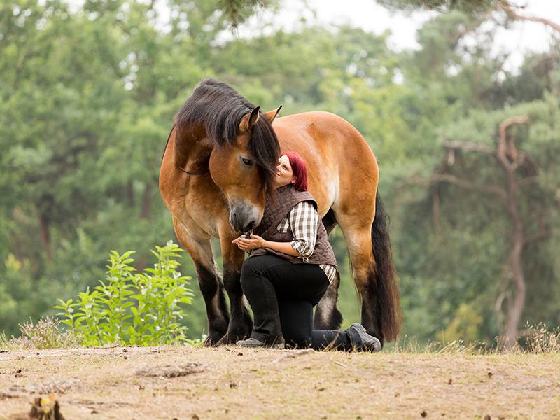 Sylvia Czarnecki - Positives Pferdetraining mit Herz