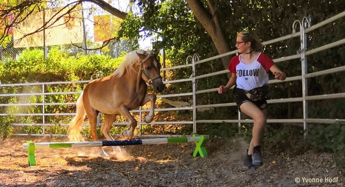Kind und Pony zu einem guten Team machen © Nicole Peitz