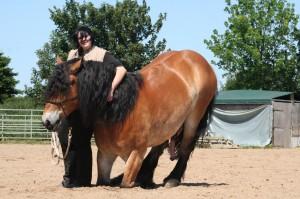 Pferde haben kein Schamgefühl - ihre Reaktionen sind somit immer natürlich