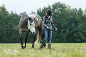 """""""Druck"""" muss man nicht üben - Positive Verstärkung lässt Pferde mutig und reflektiert reagieren"""