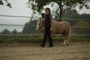 Ehrlich motiviert - Durch Belohnung lernt das Pferd, die Position selbständig zu halten