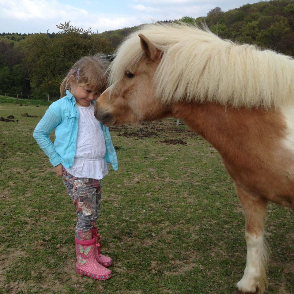 Auch die Bedürfnisse des Kindes sollten Berücksichtigung finden, ohne dabei das Pferd zu vergessen © Dzeni Bakac