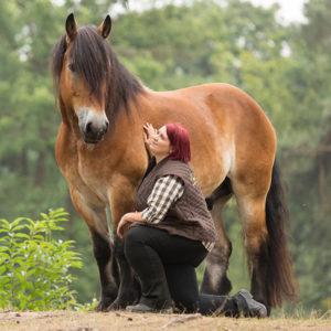 Angst beim Pferd