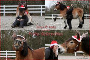 Weihnachtsgruß von Tarek und Sady